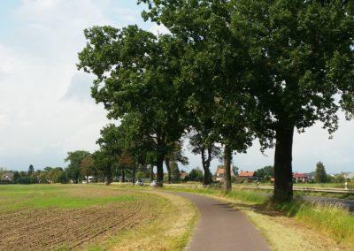 Weg nach Fahrland (aus Krampnitz kommend)