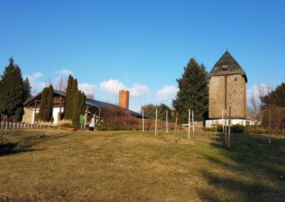 Die alte Fahrländer Bockwindmühle